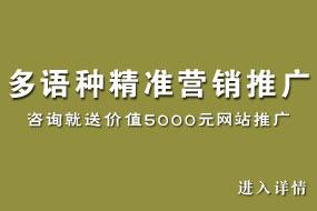 中英多语种网站精准营销推广