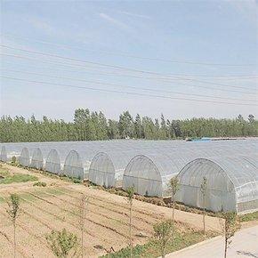 贵州温室大棚厂家