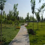 贵阳绿化工程设计