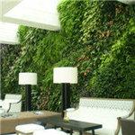 植物墙制作
