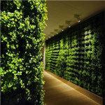 贵阳植物墙制作