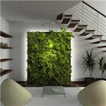 植物墙制作公司