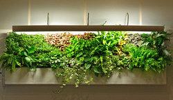 立体绿化的企业资质