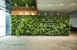 立体绿化的形式