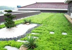 屋顶绿化可否大面积推广施工呢