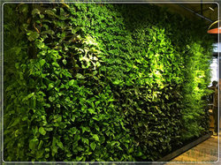 屋顶绿化发展历史