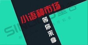 外贸小语种网站推广