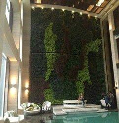 成都植物墙优缺点及注意事项