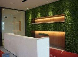 成都植物墙的存活方法