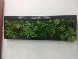 成都墙面绿化的主要形式有那些呢?