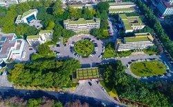 立体绿化打造宜居城市