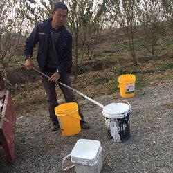 李子树涂液态防护膜工作