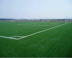 西安某运动场人造草坪