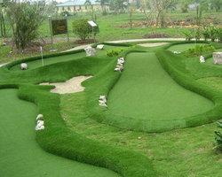 西安某公园人造草坪